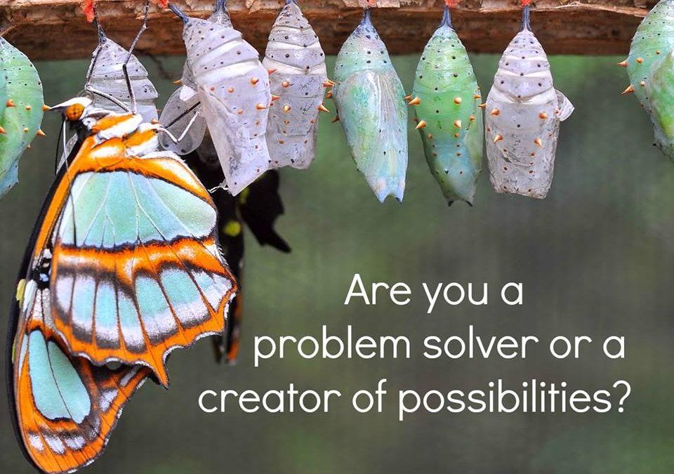Problem Solver or Solution Provider?