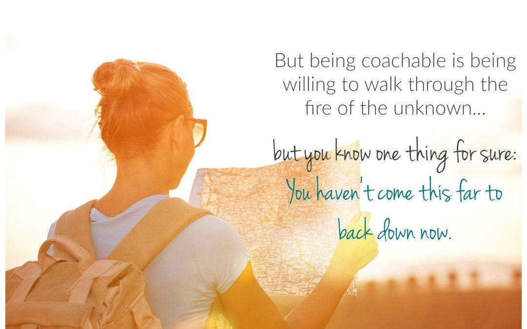 {Soulpreneur Sunday} Being told what to do is easier than being coachable.