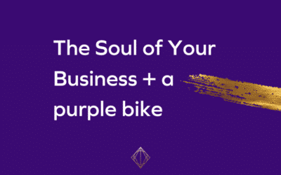 The Soul of Your Business + a purple bike